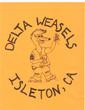 Delta, CA Weasels